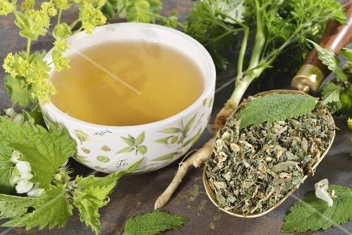 A cup of herbal tea with ingredients (lady's mantle, lemon balm, parsley root, dead-nettle)