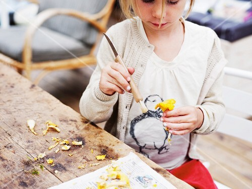 A girl cleaning chanterelle mushrooms with a brush
