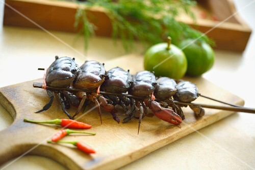 Crayfish skewer, chillies, limes and dill (Thailand)