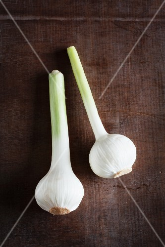 Fresh bulbs of garlic on a wooden surface