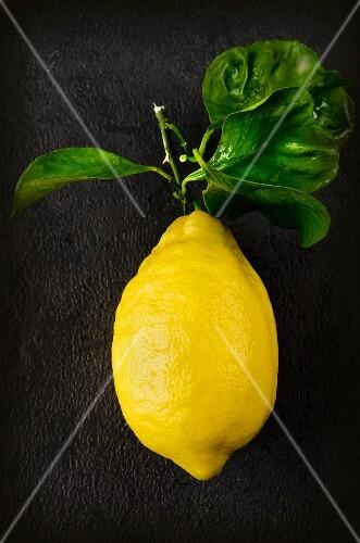 An Amalfi lemon with leaves