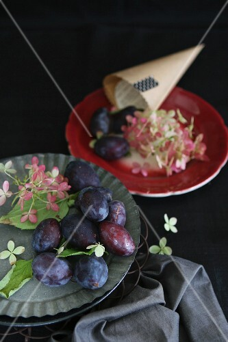 Plums and flowers on tin plates next to a paper cone on a red plate