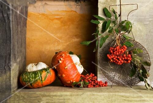 An arrangement of turban squash and rowan berries