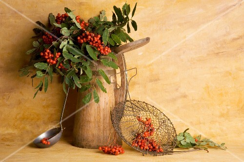 Rowan berries in a jug with a soup ladle