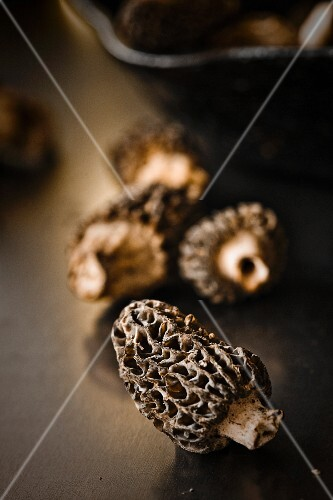 Morel mushrooms (close-up)