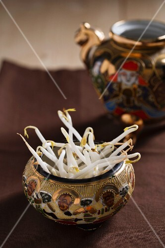 Bean sprouts in an oriental pot
