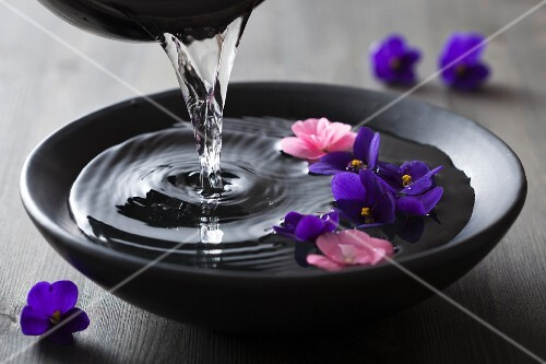 Water being poured into bowl of violets