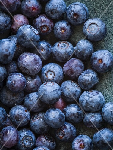 Bowl of Freshly Washed Blueberries