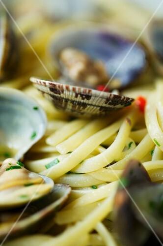 Taglierini with clams