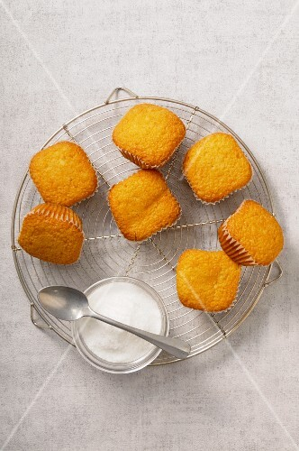 Madeleines and a bowl of sugar on a wire rack