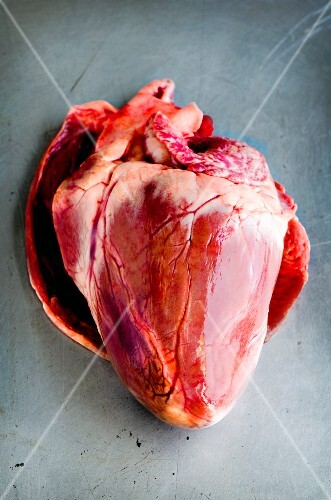 A whole fresh pig's heart on a metal surface
