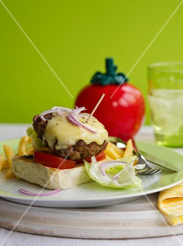 Cheeseburger with onion and tomato