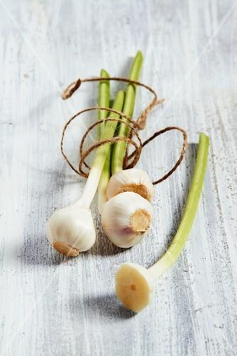 Fresh garlic and kitchen twine