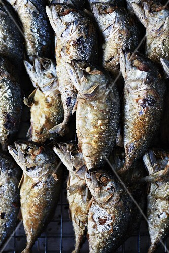 Fish fried in oil