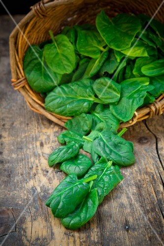 Organic baby spinach in a basket and in front of it