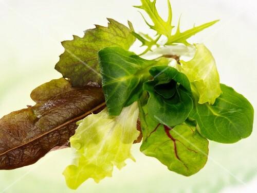 Verschiedene Salatblätter