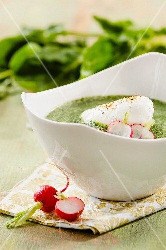 Spinach soup with a poached egg and radishes