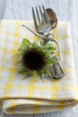 Sunflower seed head and cutlery on napkin
