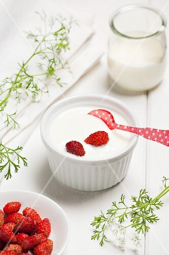 Yogurt cream with wild strawberries