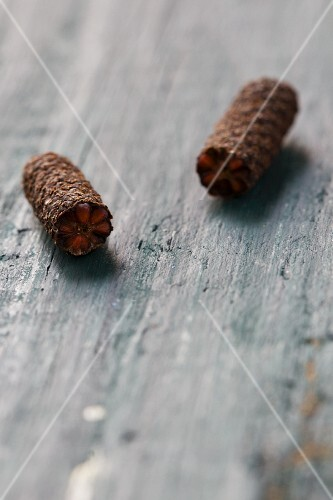 Long pepper from Java on a wooden surface