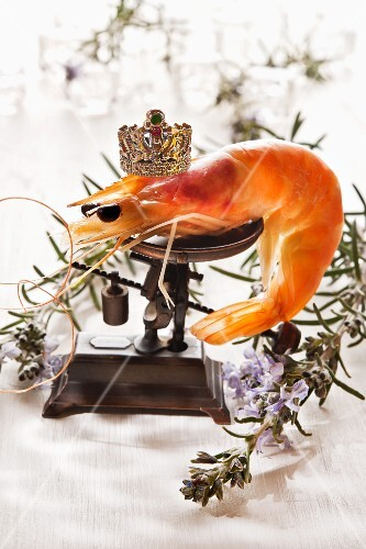 A giant prawn on a pair of scales