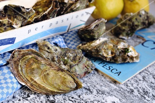 Fresh oysters on a granite work surface (Italy)