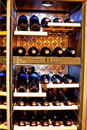Various bottles of wine in a wine fridge