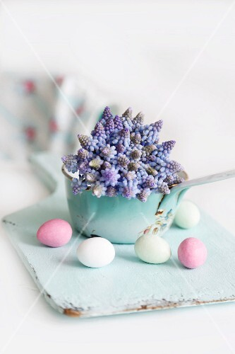 Easter eggs and grape hyacinths