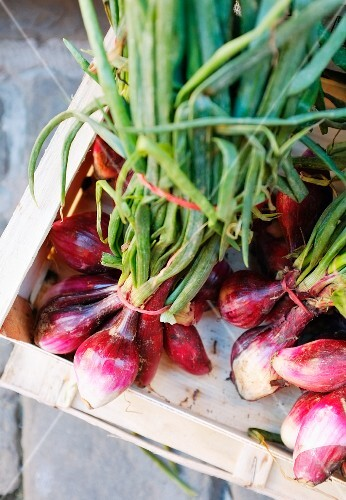 A crate of fresh red onions (Suvereto, Tuscany, Italy)
