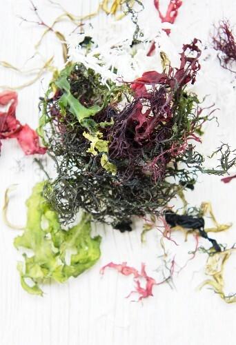 Various types of dried seaweed