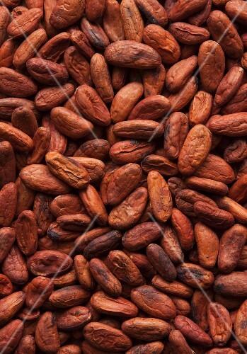 Cocoa beans, full frame