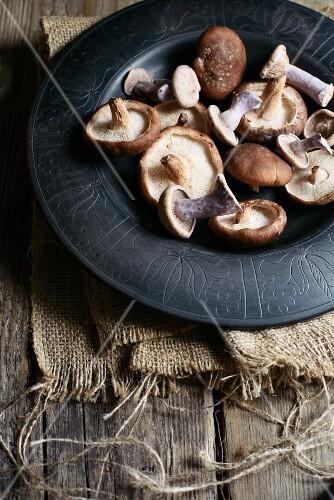 Purple wood blewits and shiitake mushrooms on a plate