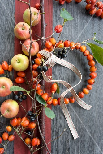Small wreath of rosehips, chokeberries and apples