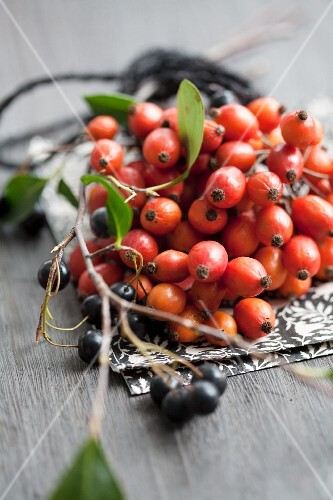 Rosehips and chokeberries on napkin