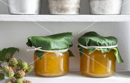 Jars of greengage jam with blackberry leaves wrapped around the lids