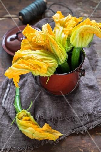 Fresh courgette flowers in an enamel bucket