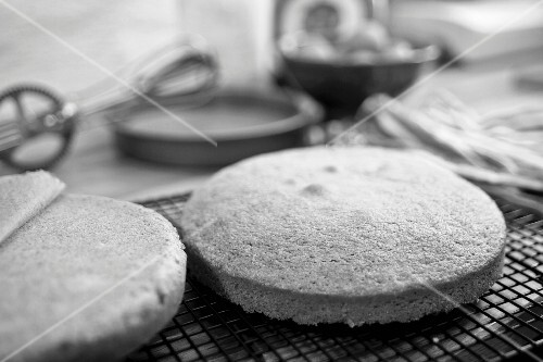 Freshly baked sponge cake on a wire rack (black-and-white image)