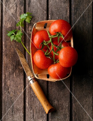Tomatoes in a wooden basket with parsley and a knife