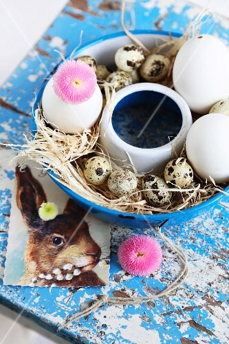 Easter nest with straw, eggs and daisies