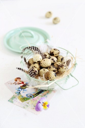 Quails' eggs, feathers and Easter greetings cards