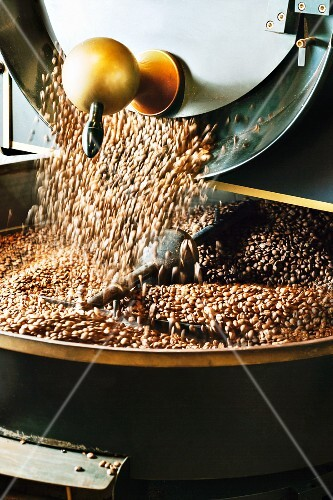 Coffee beans falling into the drum of a roasting machine