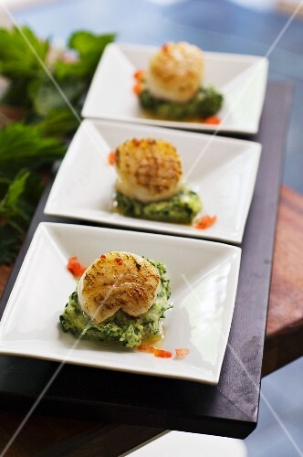 Scallops on mashed stinging nettles and potatoes