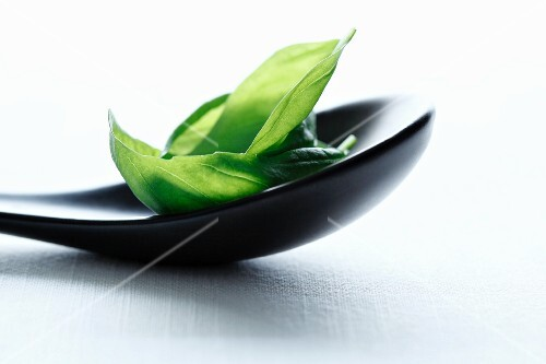 Basil leaves on a black spoon
