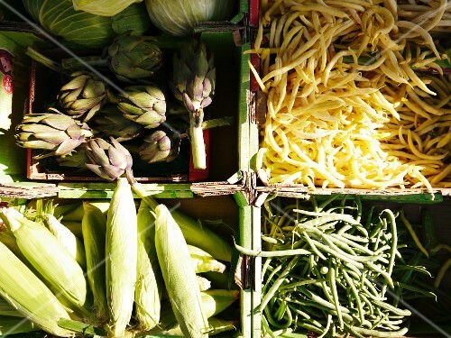 Artichokes, beans and corn cobs in crates at a market