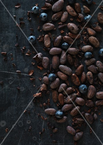 Cocoa beans and blueberries