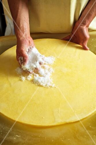 A wheel of cheese being rubbed with salt (Bregenzerwald, Vorarlberg, Austria)