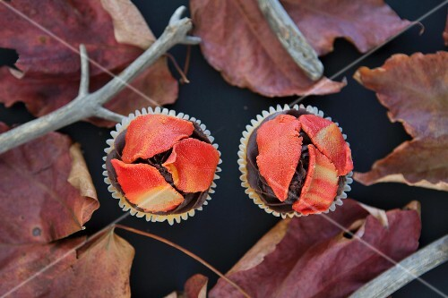 Chocolate cupcakes with autumnal decoration