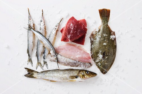 Various fish and fish fillets for frying