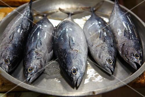 A bowl of fresh Thai mackerel