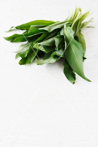 Fresh ramsons (wild garlic)